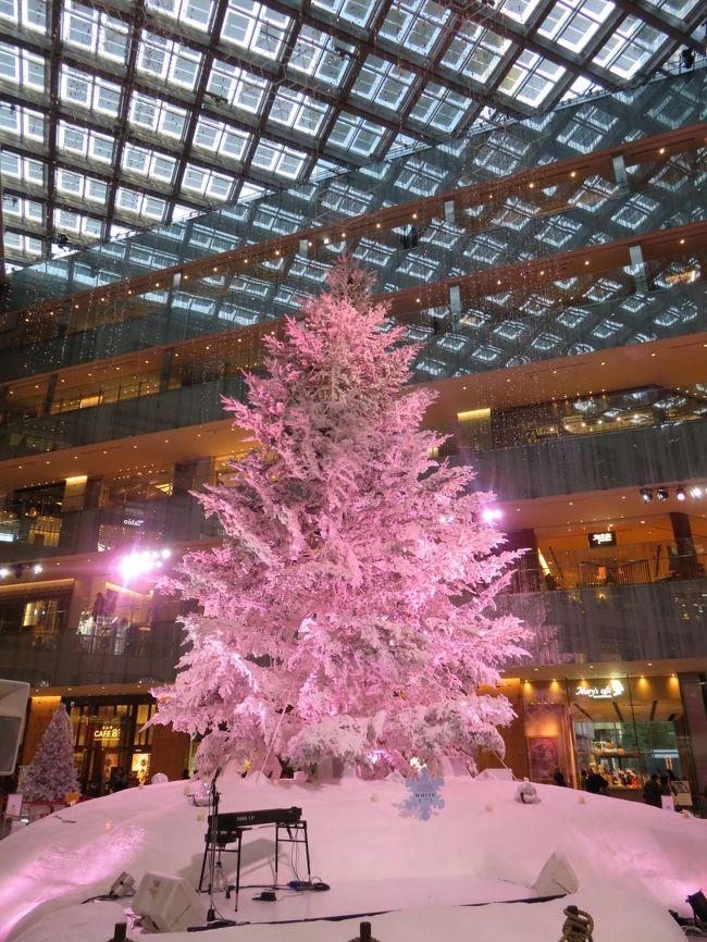 東京駅の丸の内側の工事が終わり、駅前の眺めがすっきりした。孫たち一家と何か所か、丸ビル、新丸ビル、KITTE、三菱一号館美術館などのクリスマスツリーを見て歩いた。そういえば、ウィーンのクリスマスツリーを見て歩いたのはもう3年前だ。あちらのツリーは本当の木を使用しているが、東京の丸の内近辺で見たクリスマスツリーはクリスマスデコレーションと呼ぶ方がいいかもしれない。<br /><br />一枚目はKITTEにあるツリー。<br /><br />撮影情報:<br />1/100 秒。 f/3.2 4.5 mm<br />6.4MG ISO400 <br />Canon PowerShot SX710 HS<br />