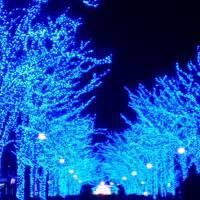 東京クリスマス&ホテルランチブッフェとイルミネーション7ケ所巡り〜横浜・恵比寿・渋谷・六本木・汐留・KITTE・丸の内〜