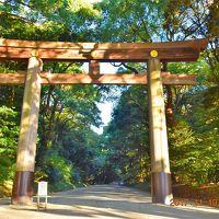 【東京散策70】『癒し』と『浄化』のパワースポット明治神宮でパワー充電ヽ(^o^)丿
