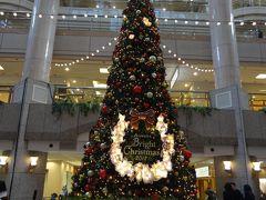 今年も横浜ランドマークのクリスマスツリーを見てきました ⭐