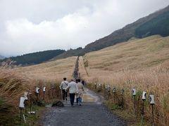 紅葉を楽しむHVC箱根甲子園2泊 仙石原すすき草原 紅葉が始まった仙石原の散歩道