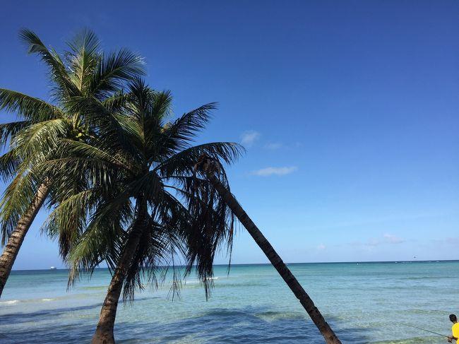 <br />さくっと訪れたサイパン<br />成田から約3時間、そこは常夏の島でした<br /><br />真夏のクリスマスを少し期待していたけれど<br />街はいい感じに寂れてて<br />海の青さとのギャップにひりひりする<br />軍の基地がないので沖には米軍の船が数隻あり<br />島は沖から見守られている<br />それも何かいい感じ<br /><br />1番楽しみにしていたマニャガハ島は<br />天気が微妙だったのと期待値が高すぎた事で<br />少し残念に思いました<br /><br />しかし海の澄み具合はぴかいち!<br />色々な海の青と白い砂浜が私を癒してくれました<br /><br />次、また機会があればグロットに行ってみたい<br /><br /><br /><br />