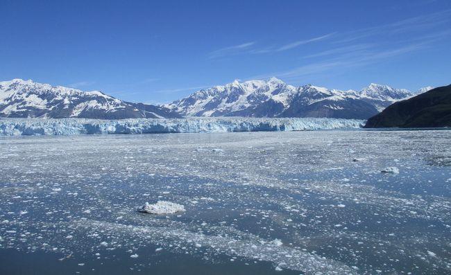 アラスカの雄大な氷河とインサイドパッセージクルージング 16日間