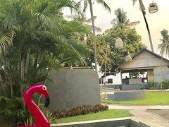 またまたバリ島へ、ロビナビーチLilin Lovina Beach滞在編