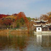 鶴見緑地 花博記念公園の散策と昼食。