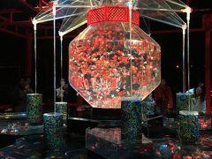 京都の紅葉と金魚の祭典 Vol.1 今年の紅葉は早かった…( ;´Д`)