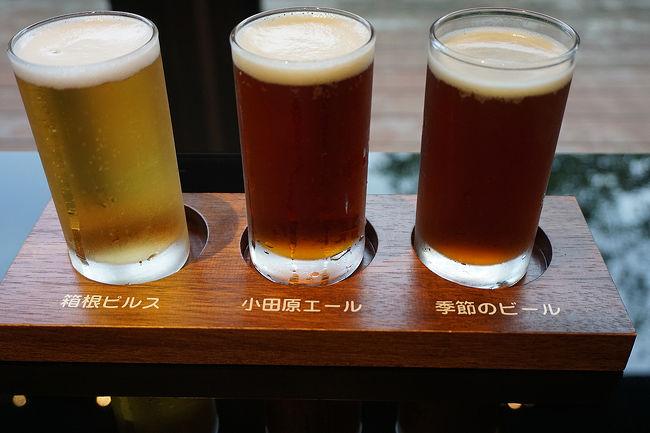 身内と一緒の東京・箱根旅行。<br />何度か東京に行った事はありましたが、とっても充実した、東京っていいな、箱根っていいな、とほっこりする旅が出来ました。<br /><br />1日目…東京旅行記~2017 北区編~→東京旅行記~2017 港区編~その1→東京旅行記~2017 中央区編~その1<br />2日目…東京旅行記~2017 中央区編~その2→東京旅行記~2017 目黒区編~→東京旅行記~2017 港区編~その2→その3→東京旅行記~2017 大田区編~<br />3日目…東京旅行記~2017 港区編~その4→神奈川旅行記~2017 箱根編~その1→その2→その3→その4<br />4日目…神奈川旅行記~2017 箱根町編~その5→その6→小田原(泊)<br />5日目…小田原界隈散策→真鶴界隈散策→JR真鶴駅→JR三島駅→JR新大阪駅