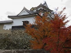 2017暮、滋賀と京都の名城巡り(7/17):12月2日(7):彦根城(7/11):天守、楓の紅葉、西の丸、西の丸三重櫓、カナメモチ