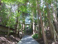 秋の別所温泉♪ Vol7(第2日) ☆別所温泉:「安楽寺」へ参道を歩く♪