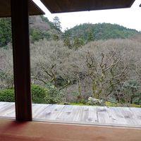 冬の京都ハイキング 京都トレイル 高雄〜嵐山