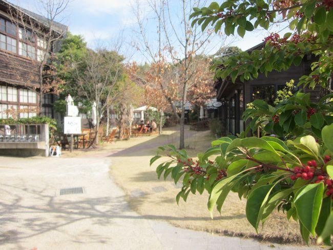 師走の南紀 ゆるり南部・鶴の湯温泉と買い物ツアーぶらぶらドライブ旅