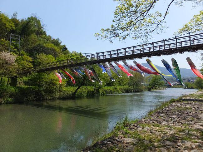 JALの「どこかにマイル」の広告を見て6000マイルを貯めて挑戦。松山になりました。<br />20年ぶりの訪問です。松山の街はどう変わってるかなあ。<br />さて、どこかにマイル自体1ヶ月以内の旅行日しか選択できないので準備に時間はかけられません。<br />あわててガイドブック買って地理を頭にたたきこみ、訪問したいとこを選び、時刻表を駆使して計画を練ります。<br />訪問地は内子・大洲・松山に絞り、温泉を1泊入れて、今年で長期休業に入る道後温泉本館に入って、と。<br />行ってみるとどこか懐かしさが印象に残る旅になり大満足。<br />旅行はきっかけは何であってもいくらでも楽しめますね。<br />さて、いつものように会社終了後に最終便で松山入り。それは0日目として、1日目は時刻表に載っていた「内子・大洲町並散策1日パス」を使っての街歩きです。<br />前半は内子町の街歩きです。レンタサイクルやバスもあるのですがこれくらいの規模の街なら歩きで十分。いろんな見どころが詰まった街でした。表紙写真は街はずれの「内子フレッシュパークからり」横の小田川に泳ぐ鯉のぼり。気持ちのいい眺めでした。<br />
