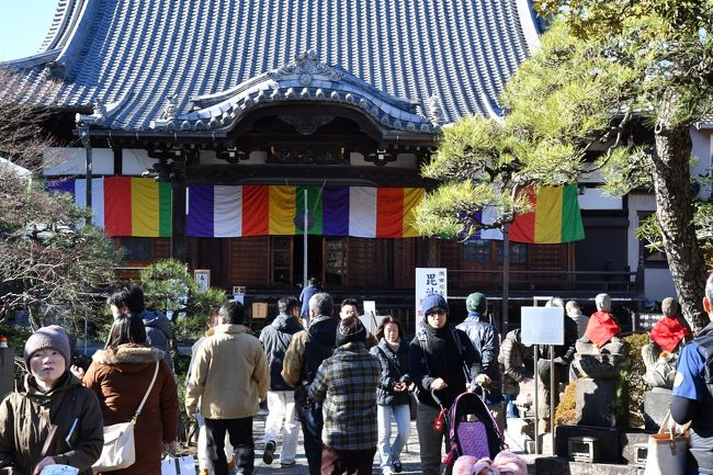 毎年お正月二日は七福神めぐりに出かけています。今年はNHK朝ドラ「ひよっこ」で向島電機として向島周辺が物語の設定上登場するので、向島七福神(墨田七福神とも呼ばれています)に出かけました。<br />社寺はすべて墨田区内にあって、江戸時代の文化年間(1804~1818年ごろ)に向島百花園に集う文人によってはじめられたとされています。今年で向島七福神発祥200年にあたるそうです。向島といえば料亭街だったところで、今でも料亭が何軒もあり芸妓さんがいる風流な歴史があります。<br />今回は荒川の土手の脇にある東武スカイツリーラインの堀切駅を出て<br />多聞寺→白髭神社(和太鼓の演奏を鑑賞)→向島百花園(お正月の草花を鑑賞)→長命寺(草餅)→弘福寺(せき止め飴)→三囲神社→ソラマチを経由→都営浅草線押上駅<br />約6キロほどの行程を休憩時間込みで3時間ほどで歩きました。以前は七福神のパンフレットに付いている絵地図で迷いながら歩いたものですが、今回は元々案内看板が数多く設置されているうえに、スマホの地図アプリとGPS機能で現在位置を確認しながら歩いたので迷うことなく距離感もしっかり把握できて安心して歩くことが出来ました。