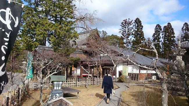 湯豆腐を食べに京都へ。