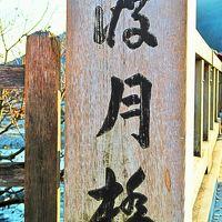 京都-12 嵐山:渡月橋あたり散策(15時まで)☆嵐山公園〔戸隠〕そば定食を
