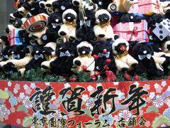 新春2018年戌年・東京国際フォーラム恒例の干支クリスマスツリーから干支飾りへ