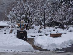 雪こんこんの川治温泉で2017年の旅納め