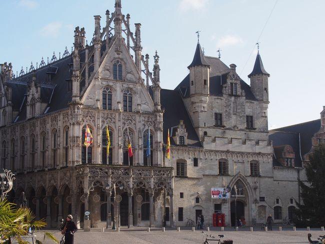 ブリュッセルとアントワープの間にある人口8万人の街です。<br />16世紀初め神聖ローマ帝国のフランドルの中心として栄えた街です。<br />街には市庁舎、聖ロンバウツ大聖堂などの<br />その当時の繁栄を示す歴史的建築物があります。