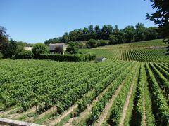 フランス南半分の旅 【20】 サンテミリオンの葡萄畑を後に