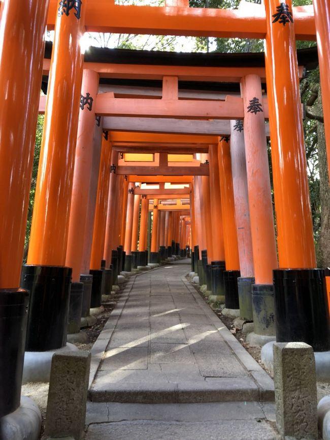 毎年恒例の年越し旅行、今年は京都へ。<br /><br />寒さが心配でしたが、拍子抜けするくらい暖かかったです(^-^)<br />が、大晦日は雨予報だったので、お天気具合を見ながらの移動でした。
