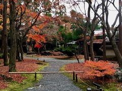 京都旅行 紅葉二日目観光~大徳寺 黄梅院-鷹ヶ峰しょうざん庭園