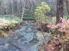 晩秋の上高地♪ Vol8(第2日) ☆明神池へ優雅に歩く♪川のせせらぎを聞きながら♪