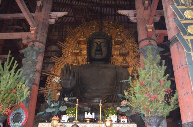 真冬の奈良へ行って参りました。<br />12月に先に行っていた友人から、とても寒いのは聞いてましたが、本当に寒かったです。<br />東京も出発日はこの冬一番の冷え込みで、電車を待つホームが辛かったです。<br />新幹線で東京から京都へ。宿泊先ホテルがドーミーイン奈良だったのでみやこ路線でJR奈良に。<br />1日目は到着後ホテルに荷物を預けて、東大寺-二月堂、法華堂-浮御堂-十輪院-元興寺-興福寺と回りホテルに戻って温泉とサウナ三昧でした。<br />