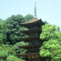 2017夏 安芸の宮島と「おいでませ山口へ」の旅<第4日>秋吉台→美祢市→山口市