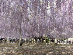2016GW 栃木への旅