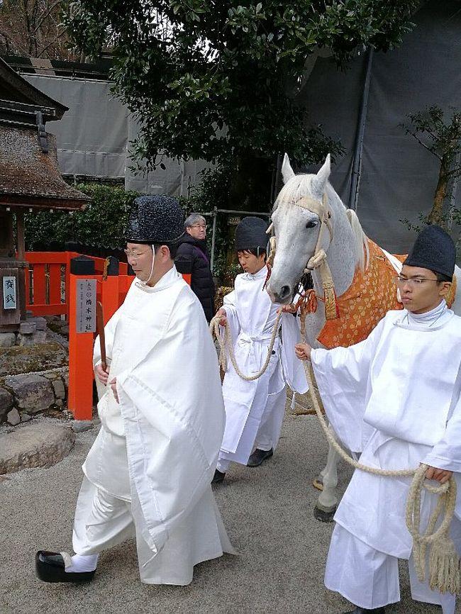 本来、4トラベルには、宿泊を伴った旅行しか投稿しないのですが、我が家で大きな話題になった出来事なので、投稿してみました。お正月三が日を避けて初詣に出掛けた京都上賀茂神社で妙な写真を撮ってしまいました。内容をご確認ください。