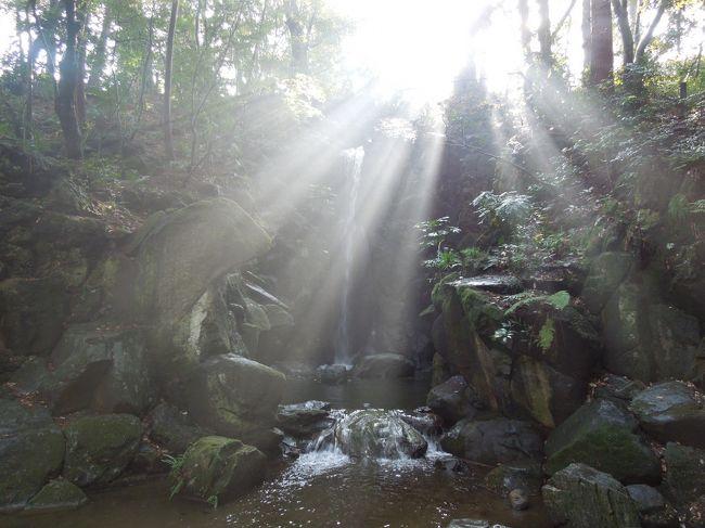 祝日勤務明けの私、成人式の着付けの仕事明けの妻、お疲れの二人で成田山新勝寺にお参りして、参道の老舗「川豊」で鰻重をいただき成田の温泉でゆったりしてきました。