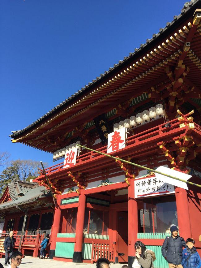 常に変化しつつある鎌倉。何度行っても楽しいのかもしれません。まだまだ奥が深いようです。