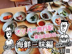 オリバー旅行記【釜山2泊3日/海鮮三昧編/2~3日目】