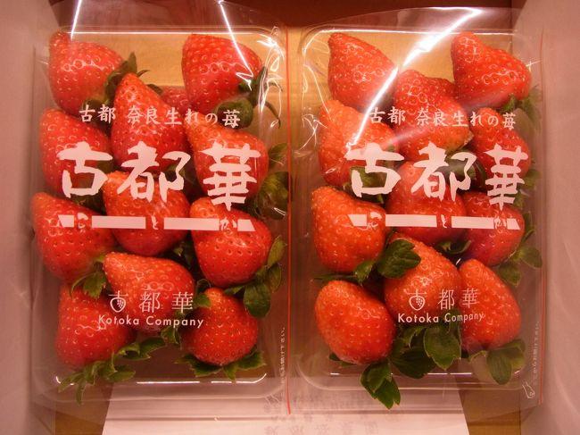 ある店と話していたら、糖度が高くて水分が少なめの苺が話題になり、<br />住んでいる京都から日帰りで買いに行ける距離で調べてみました。<br />そうすると、奈良県産の「古都華(ことか)」が気になり、苺に関して<br />全くの素人ながら興味が湧き、農園にアポを取って伺うことに。<br /><br />今回は2017年1月に訪問していますが、下見も兼ね2017年12月に<br />先に1人で伺いました。<br />古都華の話題になって同調者が2名出て、しかも1人はマイカーを<br />出してもらうため、3人で行動。<br /><br />予定外の収穫もあり、えぇ年した3人がきゃあきゃあ言いながら<br />道中楽しめ、差し入れした苺で試作品も頂き、充実した行程でした。<br />では、ご覧になってやってください。