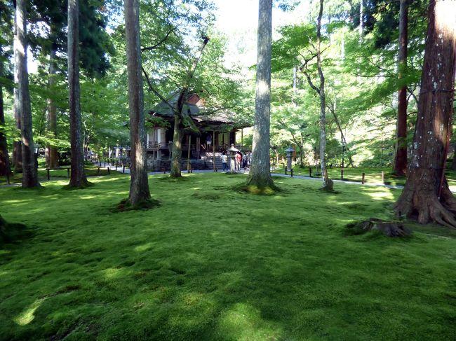 写真の枚数が50枚に達したので、4話に分けて京都大原三千院の様子を綴ります。<br /><br />酷暑の中ですが、広い境内を一通り回るとホテルのチェックイン時間が近づいたので、真っ直ぐこの日から2泊するエクシブ京都八瀬離宮に向かいます。<br />