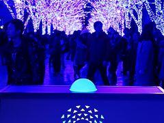 渋谷-2 青の洞窟 SHIBUYA 60万球点灯! ☆青色に包まれる800m大空間・とき
