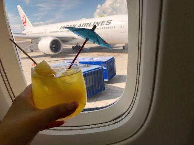 おいしいハワイ④デルタ航空スカイラウンジ・ビジネスクラス「デルタワン」のホノルル発限定機内食・おまけのヒルトン成田