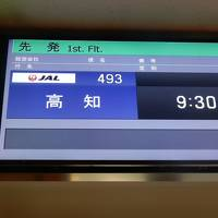 JALどこかにマイルで高知 弾丸
