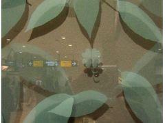2017 有名温泉に行ってみたい!! 伊香保と草津に行くたび① その前に新勝寺に参ります 夜は根津で一杯。(中目黒駅でちっちゃい幸せを見つけました。)