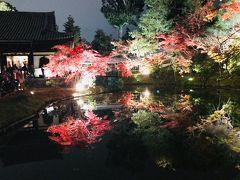 2017地元京都で紅葉狩り