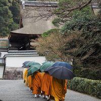 年末年始は初京都♪美仏さまにお会いした~い!!③ ★平等院、三十三間堂、即成院、戒光寺、泉涌寺・・・など★