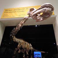 ニューヨーク7連泊で家族旅行(4日目)セントラルパーク 自然史博物館