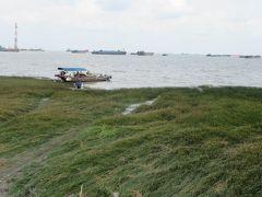 上海 上海呉淞砲台湾国家湿地公園