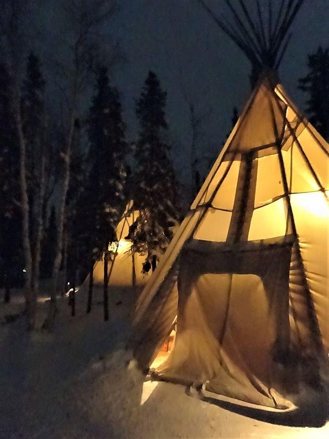 冬のカナダを旅する★イエローナイフでオーロラ鑑賞&犬ぞり体験@オーロラビレッジ