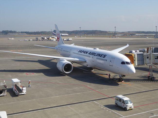1年前に冬季休暇を利用してオーストラリアのタスマニア観光をしましたhttps://4travel.jp/travelogue/11205102。その際、チケット早期購入するとJALビジネス便が他社便より安いことが分かりました。今回も同様にJALビジネス便を利用して東京とシドニーを往復しました。オーストラリアでの訪問場所は異なりますが、昨年と同じ日程です。今回はパース起点で西オーストラリアを観光しました。オーストラリア国内はカンタス便とレンタカー利用です。<br /><br />昨年JAL利用の印象が良かったので今回も期待しました。日程は前回と同じで、NRT出発が12月23日夕方、帰着が1月2日夕方です。JAL機材は1年前と全く同じで、機内サービスも前回同様に丁寧で食事も美味しくて快適でした。残念だったのは、出発時に成田空港の桜ラウンジが沢山の利用者でとても混んでいて、上階の食事席で行列が出来ていたことです。下階の飲み物席には程々の空きがありました。家内は行列に並んで目的のカレーライスを食べましたが、私は行列と混雑を敬遠して、飲み物だけで済ませました。年末の最も混む時期とは思いますが、食べ物を求める長い行列は嬉しくありません。これに対し、シドニーとパースで利用したカンタス航空のビジネスラウンジは、混雑していませんでした。西オーストラリア観光は、毎日が晴天で珍しい景色も多くて、楽しむことができました。出発時のJALラウンジの超混雑状況、ちょっぴり残念に思いました。