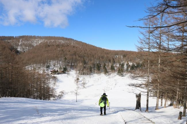 今年の登り始めはアルプス系にしようとしてましたが、どこも今シーズン最強寒波のせいで全滅・・・<br />なんとか入笠山が大丈夫そうだったので、雪山デビューの友人含む3人でゆる~くハイキングをしてきました。<br /><br />雪山ビギナー向けな山なのでちょっと消化不良でしたが、山頂からの展望はサイコーでした!<br /><br /><br />【コースタイム】<br />10:40富士見パノラマリゾートゴンドラ山頂駅⇒11:53入笠山12:05⇒12:25マナスル山荘13:20⇒13:45富士見パノラマリゾートゴンドラ山頂駅<br /><br /><br />ちなみに過去の雪山登山は<br />2017 唐松岳<br />https://4travel.jp/travelogue/11235118<br />2017 谷川岳<br />http://4travel.jp/travelogue/11226394<br />2017 黒斑山<br />http://4travel.jp/travelogue/11219079<br />2017 東天狗岳<br />http://4travel.jp/travelogue/11210055<br />2016 黒斑山<br />http://4travel.jp/travelogue/11111982<br />2016 武尊山<br />http://4travel.jp/travelogue/11109580<br />2016 霧ヶ峰(車山)&北横岳<br />http://4travel.jp/travelogue/11095764<br />2016 赤城山<br />http://4travel.jp/travelogue/11090094