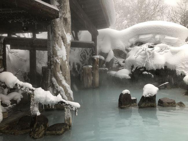 休暇を取得し、雪見露天の温泉に浸かってきました。<br /><br />加仁湯温泉の乳白色のお湯はかねてから憧れのお湯。<br />今回、「雪見露天送迎プラン」というありがたい企画を利用しました。<br /><br />露天温泉&雪三昧の満足度の高い一泊湯治でした♪