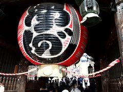 寒い冬は近場で遊ぼう!成田山新勝寺で食べ歩きと白鳥の郷
