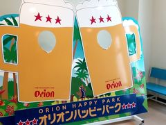 桜とオリオンビール見学