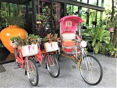 かしまし女子旅訪バンコク♪♪ まずはおなじみコースでネイル,お仕立て,タイ料理,ショッピング